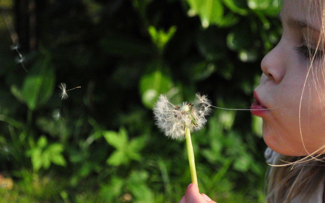 Familie-opstellingen inzetten om jouw verlangen te leven